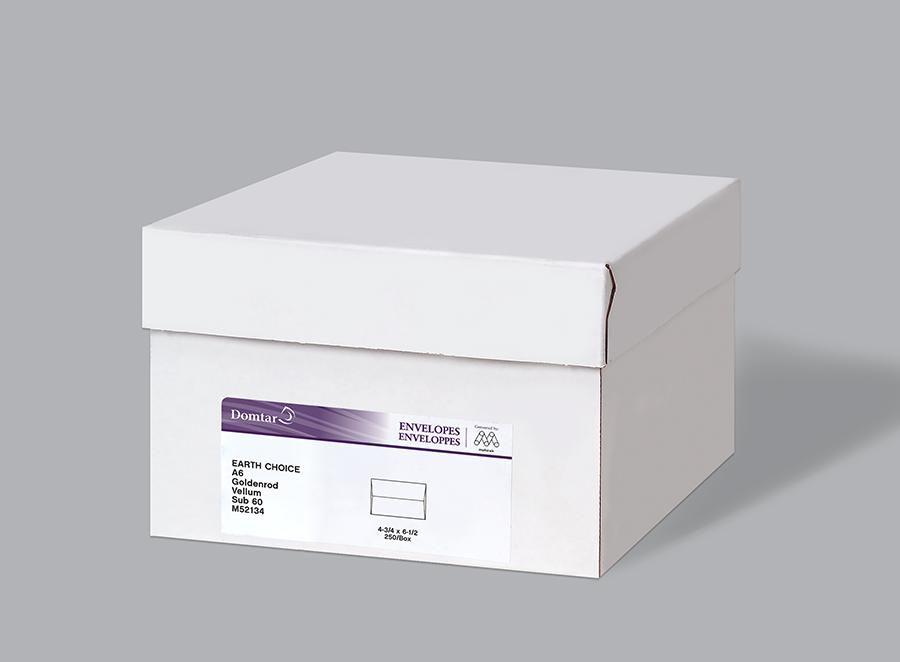 EarthChoice Envelopes Carton Image